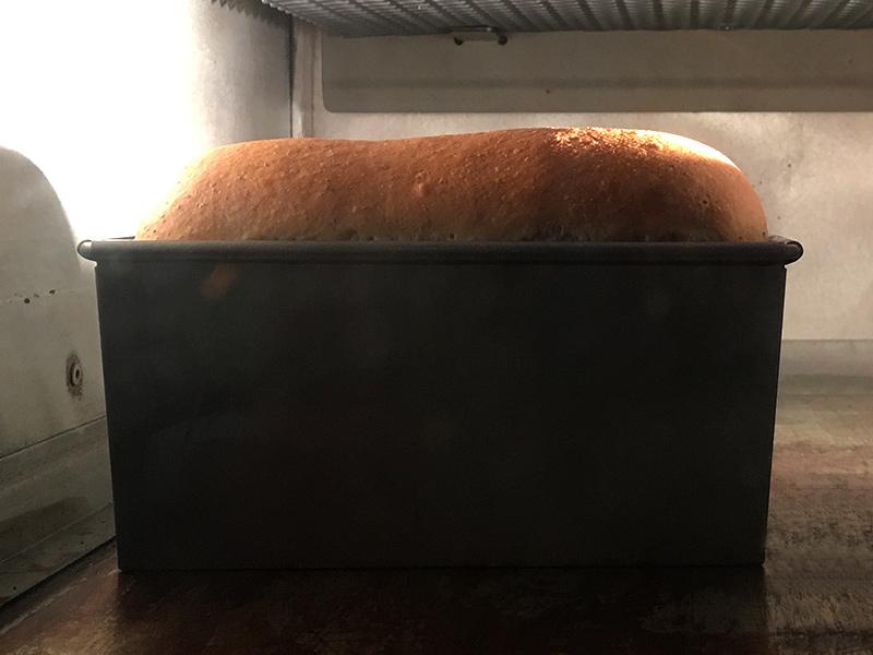 あおぞら日記 10/8 パンのこと